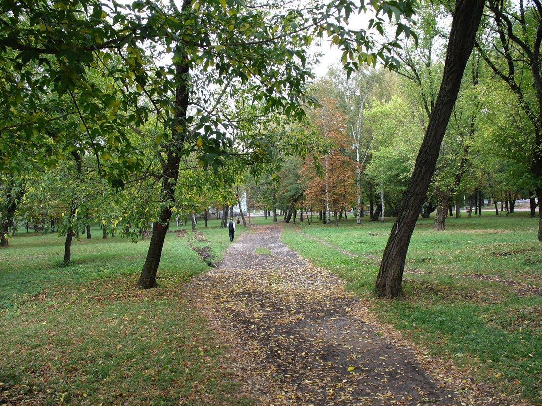 http://shakhtyphoto.narod.ru/img/autumn3.jpg
